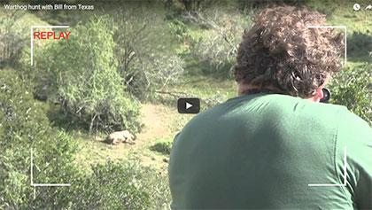Warthog 2012