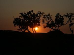 sunset1_b